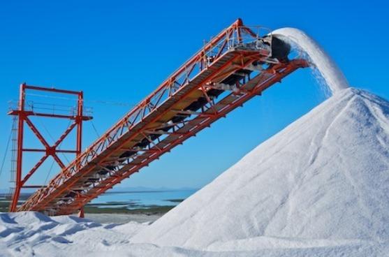empresa sal